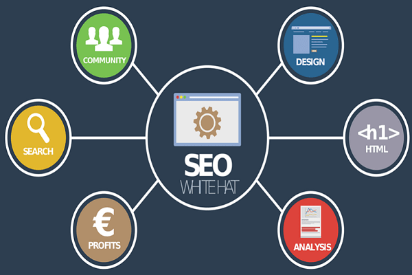 Which Company Has The Best SEO